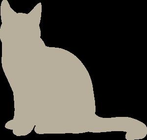 NARUMED Katze